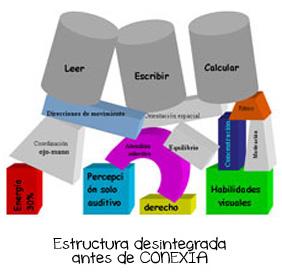conexia1