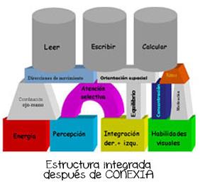 conexia2