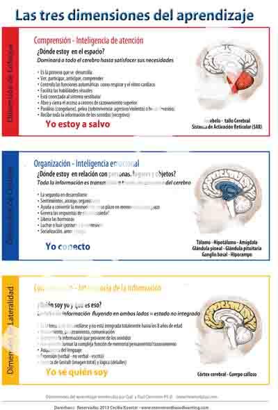 Tabla de la educación de las tres dimensiones de Aprendizaje
