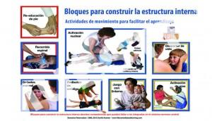 Lámina de 18 actividades de la educación