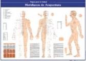 Lamina Meridianos de acupuntura