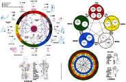 Rueda de Meridianos con la ley de medio día-media noche y la ley de los 5 elementos
